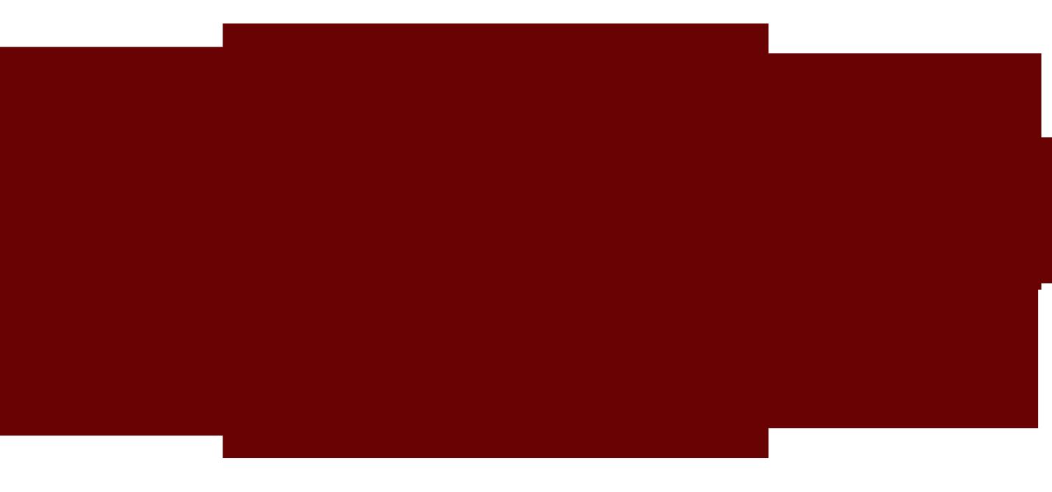sonic auto logo